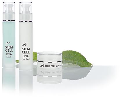 stem cell 2010 - gruppe VS - D64X9082 - ebene klein 01-1